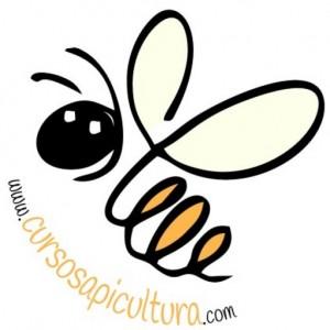 Cursos de apicultura